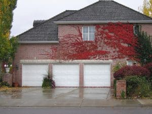 Garage Door Repair Santa Fe TX